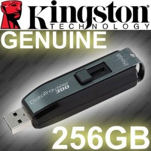 Flashdisk Kingston DT300 256GB